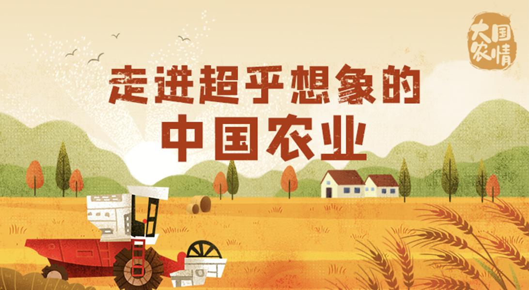大国农情 走进超乎想象的中国农业