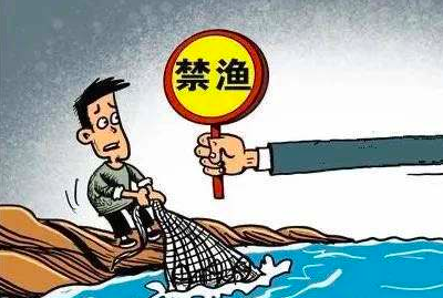 云南长江流域重点水域禁捕退捕工作初显成效