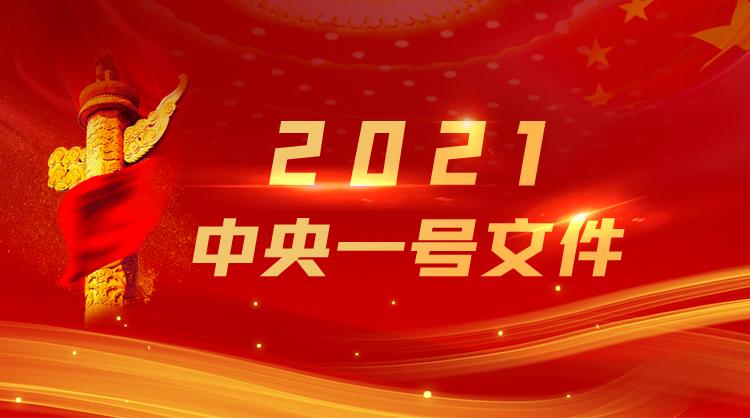 2021年中央一号文件