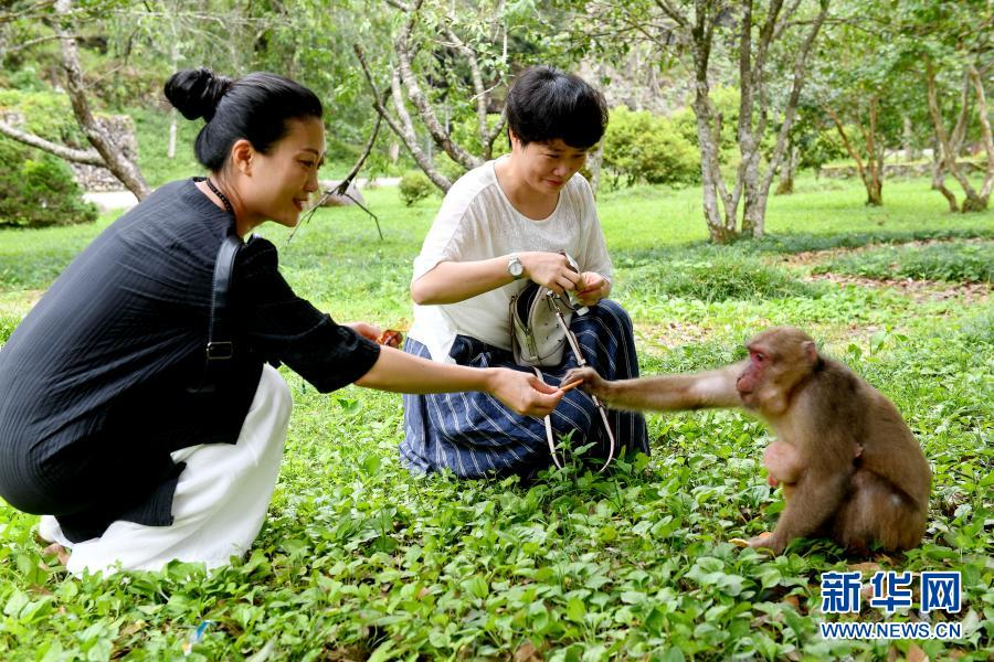 http://www.xinhuanet.com/photo/2021-02/24/1127135457_16141698964531n.jpg