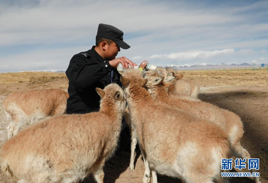 http://www.xinhuanet.com/photo/2021-02/24/1127135457_16141698964851n.jpg